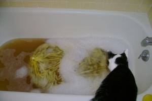 Fleece Washing: Before